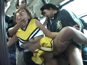 NHDT-433 Pies Kogyo Bus Molester sc2
