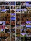 Dinosaur Valley Girls (1996) DVDRip