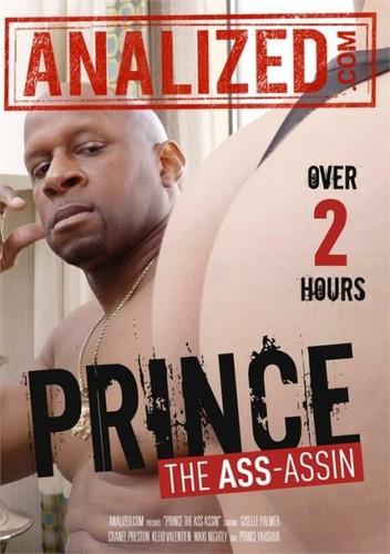 Prince The Ass Assin (2017/WEBRip/FullHD)