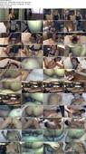 TrikePatrol.com - Natasha - 4-Eyed Furless Foxhole